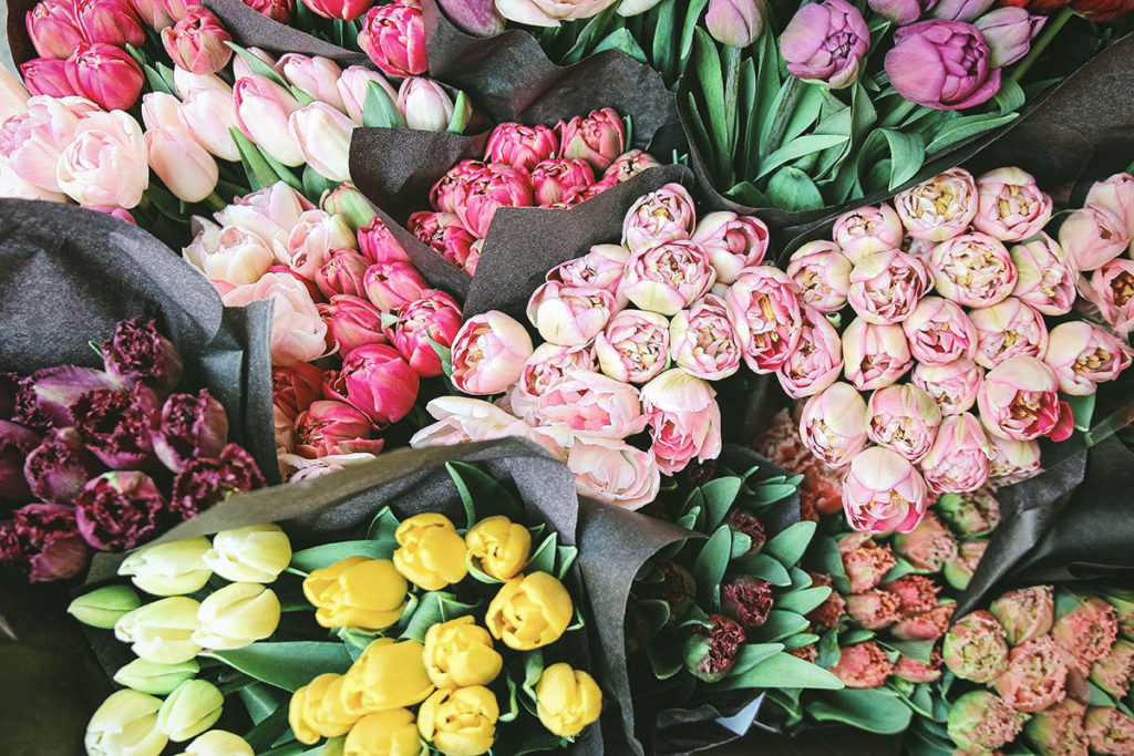flowers, bunch, overhead